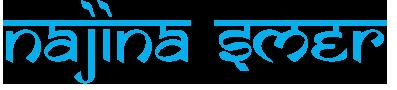 Najina SmEr Logo